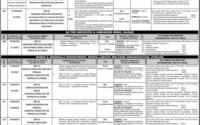 Punjab Public Service Commission Advertisement No 34