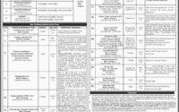 National Textile University Faisalabad Jobs