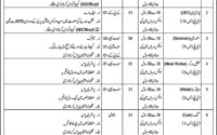 Pak Army Latest Jobs 2019 Central Ordnance Depot COD Rawalpindi