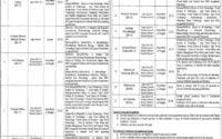 Punjab Food Authority PFA Jobs July 2019 NTS 1